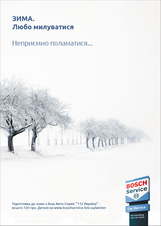 Bosch-Winter-Check